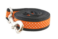 Halloween Leash Pumpkin Patch
