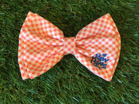 Southern Charm Collection-Checks-Orange Bow tie