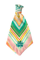 Modern Bliss Collection - ZigZag - Neck Tie