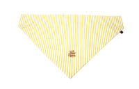 Southern Charm Collection - Chartreuse Stripe - PawKerchief