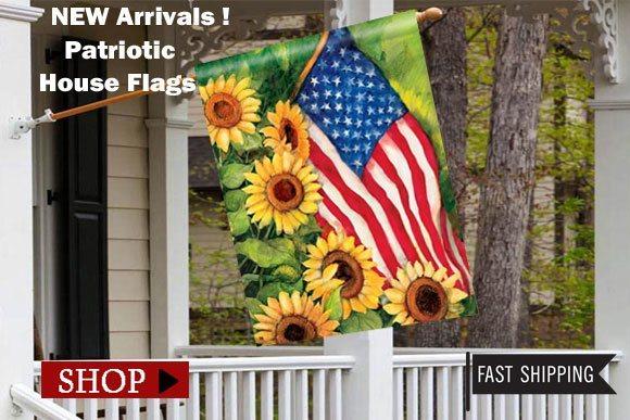 2015-patriotic-house-flags.jpg