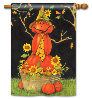 Mr. Scarecrow Standard Flag