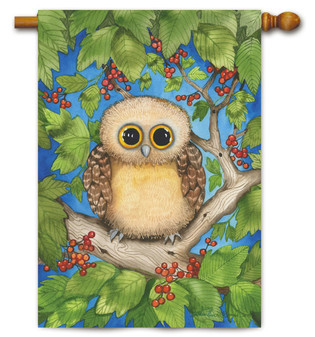 Hoot Hoot House Flag by Toland Flags