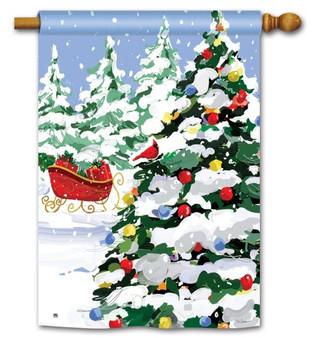Winter house flag