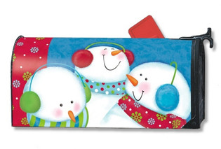 Winter mailbox cover