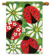 Ladybugs house flag