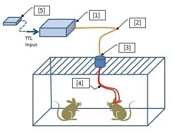 Optogenetics-LED Components
