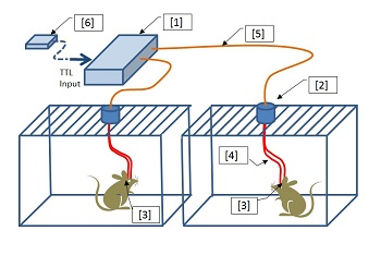 optogenetics-led-dual-system-small.jpg