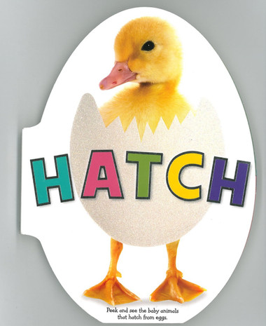 Image result for hatch book a peek and see the baby animals book