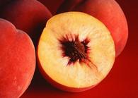 Peach Lip Balm - Lip Candy Lip Balm