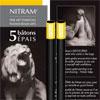 Nitram Fine Art Charcoal