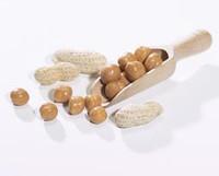 Peanut Caramel Soy Snacks