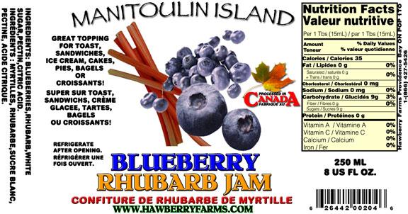 blueberry-and-rhubarb-jam.jpg