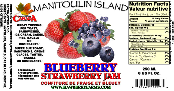 blueberry-and-strawberry.jpg