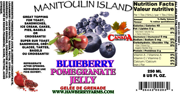 blueberry-pomegranate-jelly.jpg