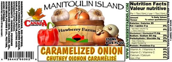 carmalized-onion-chutney.jpg