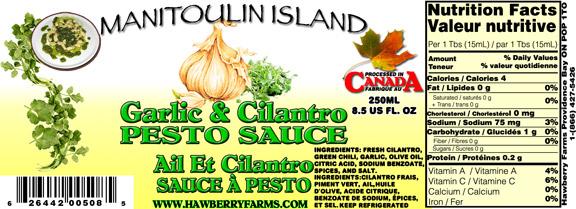 garlic-and-cilantro-pesto.jpg