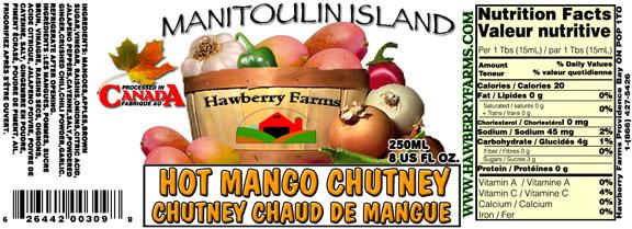 hot-mango-chuntney.jpg