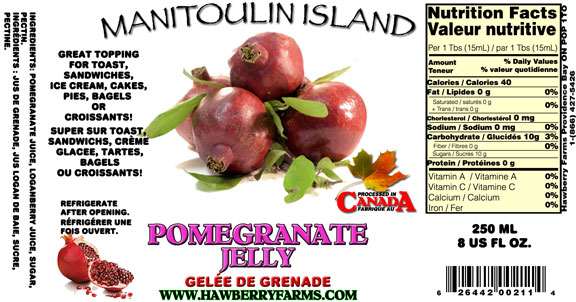 pomegranate-jelly.jpg