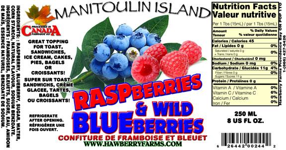 raspberry-blueberry.jpg