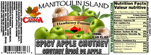spicy-apple-chutney.jpg