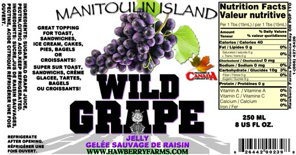 wild-grape-jelly.jpg