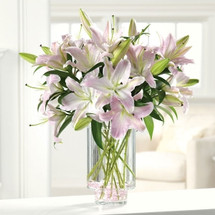 Ooh-La-La Lilies