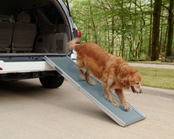 Telescopic Deluxe Dog Ramp - New XL size available!!