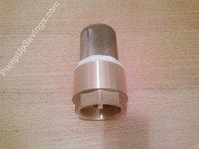 2 inch brass foot valve with screen