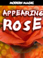 Appearing Rose - Modern