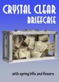 Crystal Clear Briefcase w/ Bills & Flowers