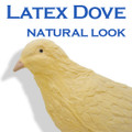 Latex Dove - Natural Look