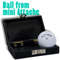 Ball from Mini Attache
