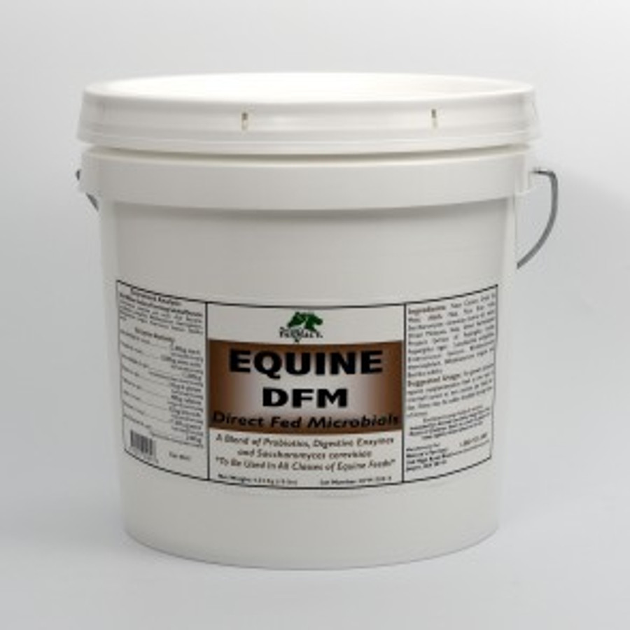 Nature's Farmacy Equine DFM Powder