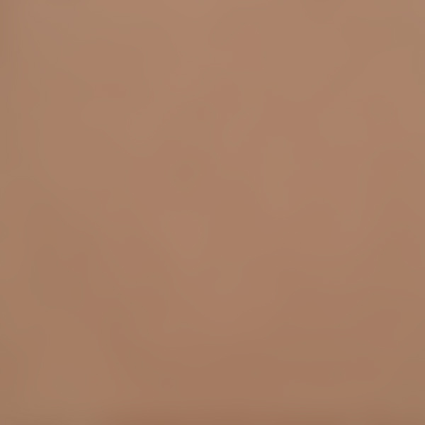 Colonial Burnt Umber Pigment mixed 10% with Tutti Casein Paint