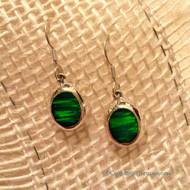 Opal Essence Earrings in Green Opal