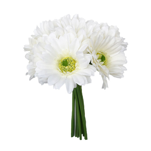 9 stems of our beautiful Ivory Gerbera Daisies