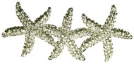 STARFISH Hair Clip Rhinestone Beach Bridal Wedding Accessories