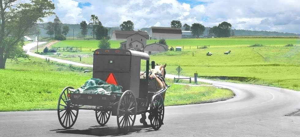 We support over 25 Amish families. Shop now!
