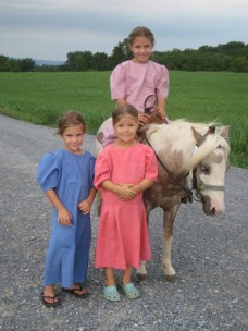 AmishQuilter Amish Girls
