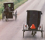 Amish Quilts - Amish Buggies