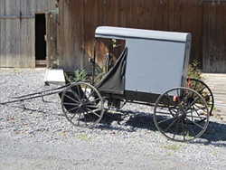 Amish Fannie Buggy