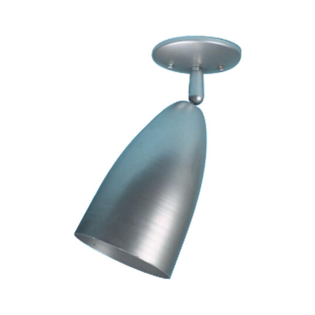 Single Bullet Ceiling Fixture