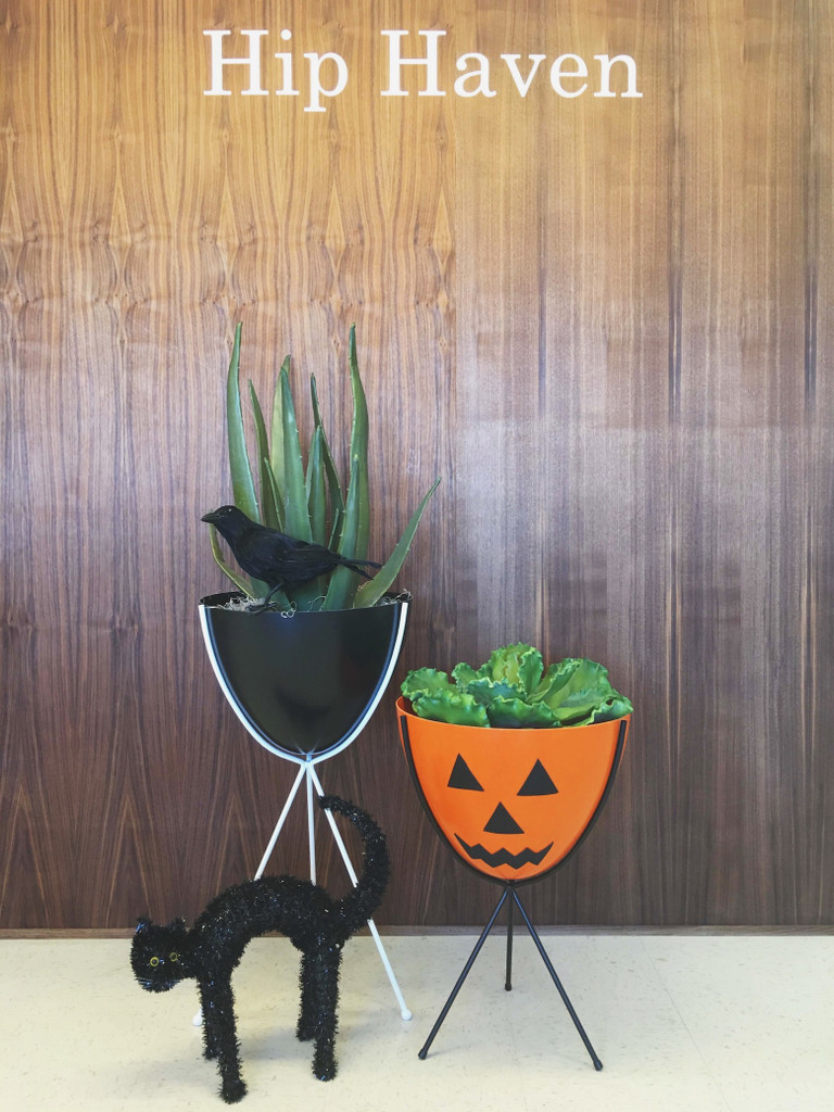 DIY Series: Bullet Planter Jack-O-Lantern & more fun ideas for Halloween!