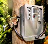Moultrie A-20 Security Box
