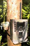 Bushnell Trophy Cam HD 119598 (European Wireless)