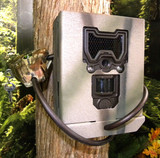 Bushnell Aggressor Security Box