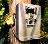 Wildgame Innovations Cloak Pro 12 Lightsout (KP12B8P2-7) Security Box
