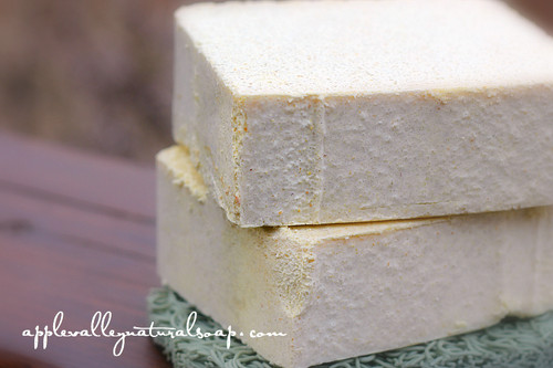 Basil Lemongrass Salt Bar - Apple Valley Natural Soap
