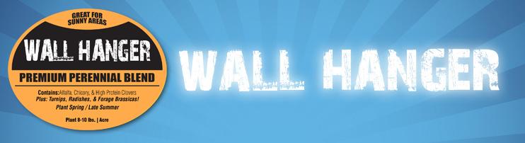1wall-hanger.jpg